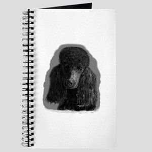 black standard poodle Journal