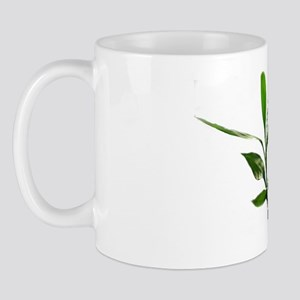 green lucky bamboo leaves. Mug