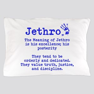 The Meaning of Jethro Pillow Case