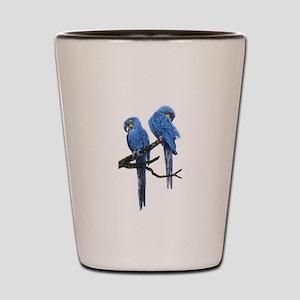 Hyacinth macaws Shot Glass