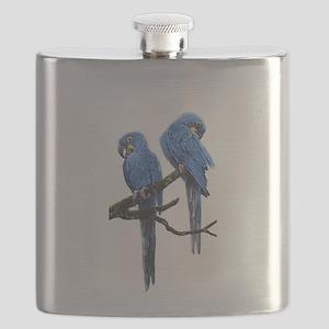 Hyacinth macaws Flask