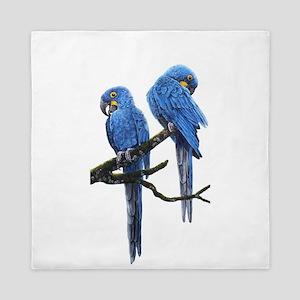 Hyacinth macaws Queen Duvet