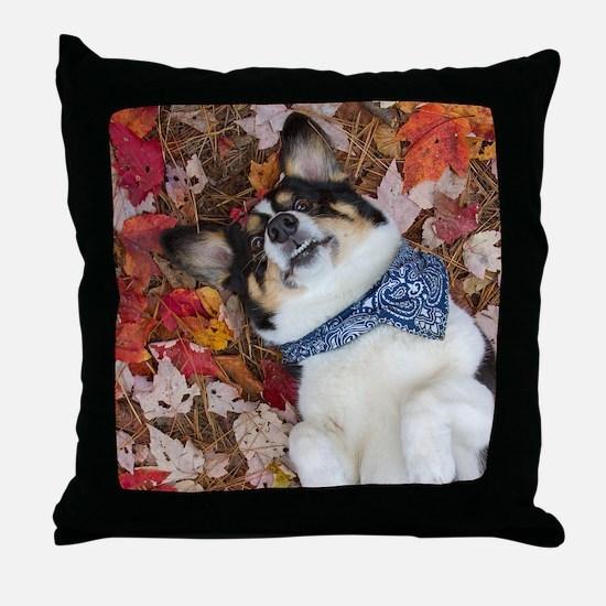 Funny, Cute, Corgi Look Throw Pillow