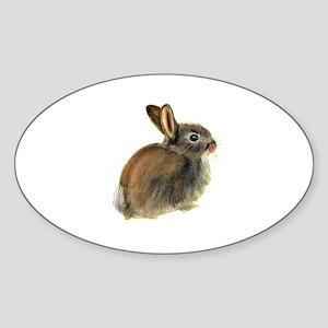 Baby Rabbit Portrait in Pastels Sticker