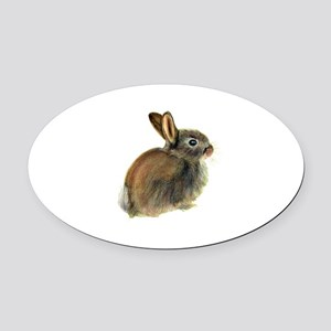 Baby Rabbit Portrait in Pastels Oval Car Magnet