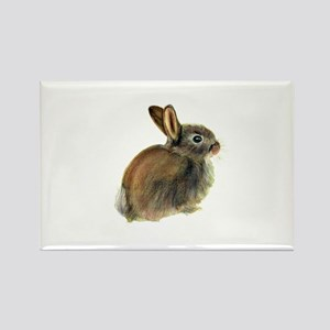 Baby Rabbit Portrait in Pastels Magnets
