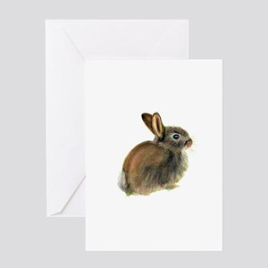 Baby Rabbit Portrait in Pastels Greeting Cards