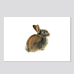 Baby Rabbit Portrait in Pastels Postcards (Package