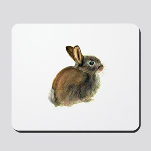 Baby Rabbit Portrait in Pastels Mousepad