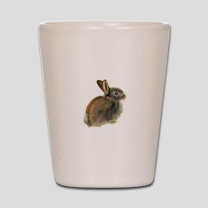 Baby Rabbit Portrait in Pastels Shot Glass