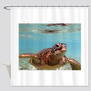 honu photo1 Shower Curtain