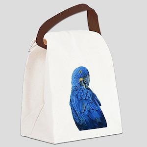 Hyacinth Macaw portrait Canvas Lunch Bag