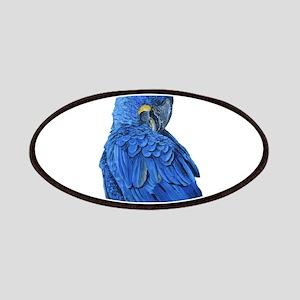 Hyacinth Macaw portrait Patch