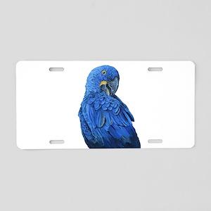 Hyacinth Macaw portrait Aluminum License Plate