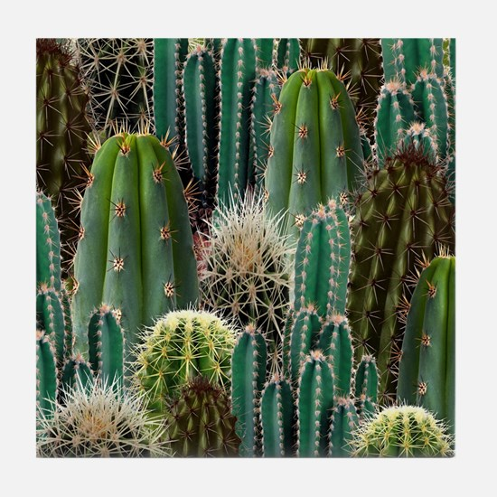 CACTUS PATCH Tile Coaster
