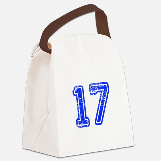 17-Col blue Canvas Lunch Bag