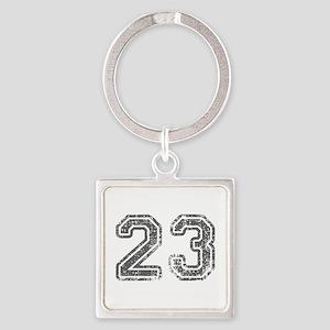 23-Col gray Keychains