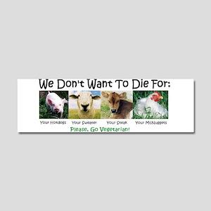 Animal Voices Car Magnet 10 X 3