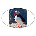 Atlantic Puffin Standing Sticker