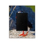 Atlantic Puffin Standing Picture Frame