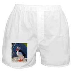 Atlantic Puffin Standing Boxer Shorts