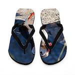 Atlantic Puffin Standing Flip Flops