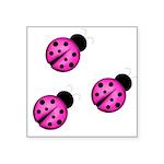Pink Black Ladybugs Sticker