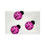 Pink Black Ladybugs Magnets