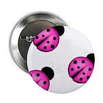 Pink Black Ladybugs 2.25