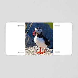 Atlantic Puffin Standing Aluminum License Plate