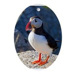 Atlantic Puffin Standing Ornament (Oval)