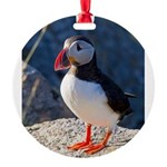 Atlantic Puffin Standing Round Ornament