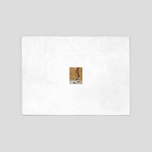 Petra 1991 5'x7'Area Rug