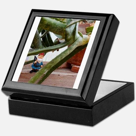 Aloe Gnome Keepsake Box