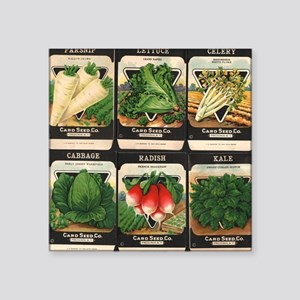 "Vegetable Packets Six Square Sticker 3"" x 3"""