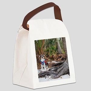 Castaway Canvas Lunch Bag