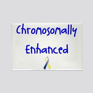 Chromosomally Enhanced Ribbon Rectangle Magnet