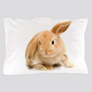 Spring Easter Bunny 2 Pillow Case