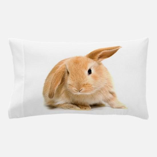 Spring Easter Bunny 2 Pillow Case