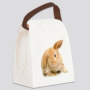 Spring Easter Bunny 2 Canvas Lunch Bag