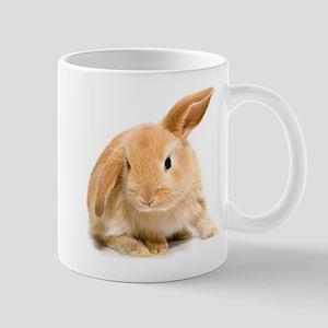 Spring Easter Bunny 2 Mugs