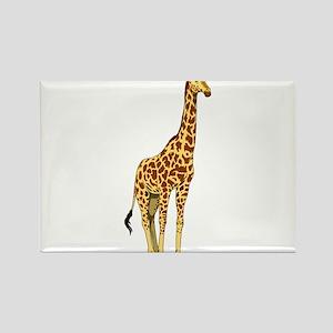 Very Tall Giraffe Illustration Magnets