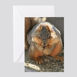 Cheeky Squirrel Greeting Card