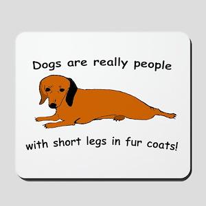 Dachshund Dogs Fur Coat Mousepad