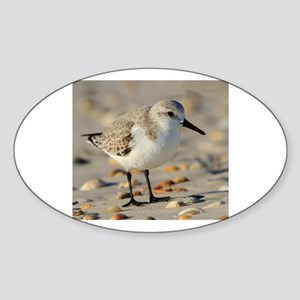 Sand Piper and Seashells Sticker (Oval)