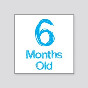 6 Months Old Baby Milestones Sticker