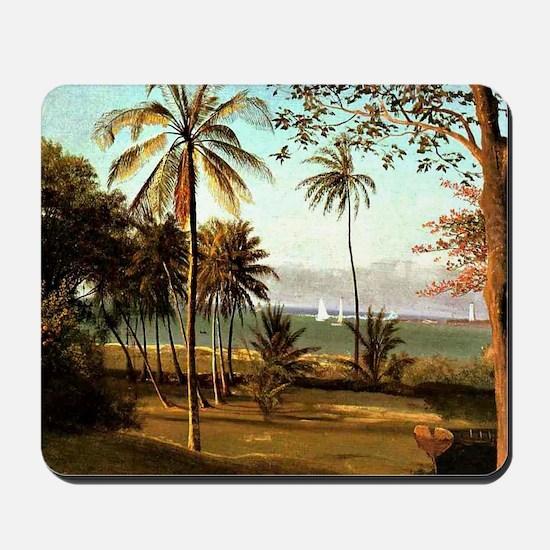 Bierstadt - Florida Scene Mousepad