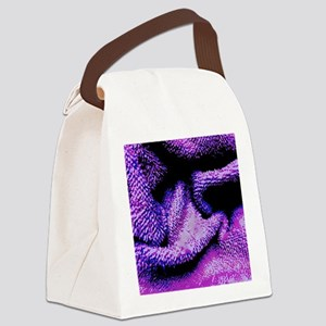 Purple And Blue Folds Canvas Lunch Bag