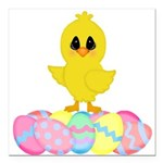 Easter Chick on Eggs Square Car Magnet 3