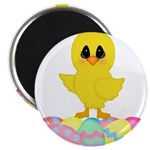 Easter Chick on Eggs Magnets